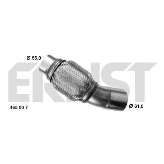 ERNST 465007