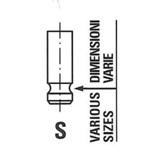 Auslaßventil FRECCIA R6567//RNT